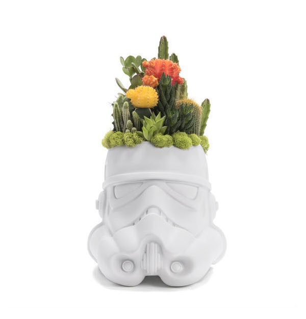 Geek Planter Ideas -- Home and Family -- Stormtooper --- We Do Geek